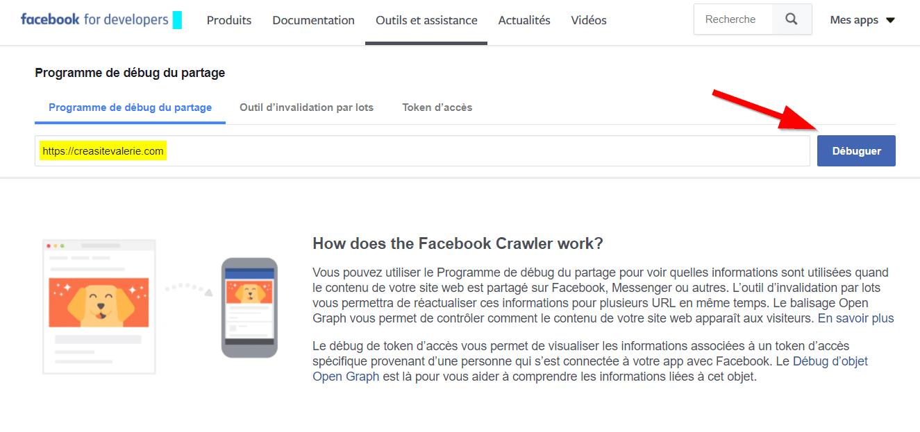 Page debug Facebook